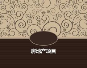 天津房地产开发
