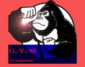 猩猩健身APP