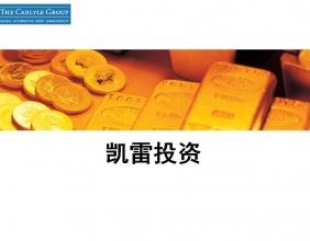 金地毯资本