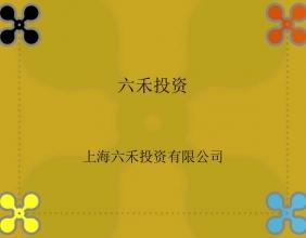 上海六禾投资有限公司